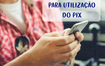 Dicas e cuidados que sua empresa deve tomar para utilizar o Pix
